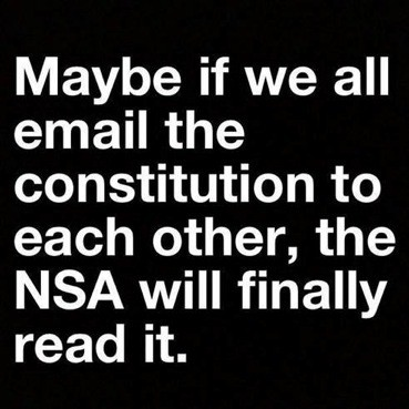 NSA-Consitution